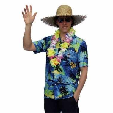 Goedkope hawaii overhemd voor heren