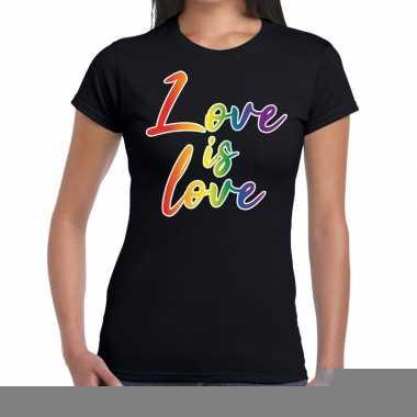 Goedkope love is love gaypride tekst/fun shirt zwart dames