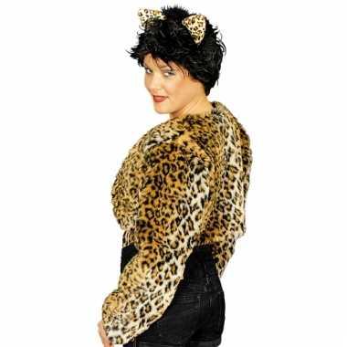 Goedkope luipaard teddy bolero jasje