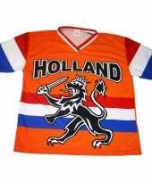 Goedkope nederland supporters t-shirt met zwarte leeuw en vlag 10047888