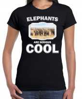 Goedkope t-shirt elephants are serious cool zwart dames kudde olifanten olifant-shirt